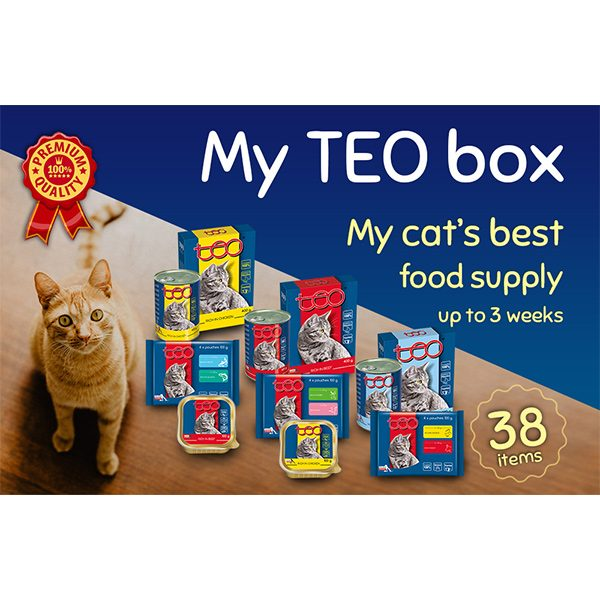 My TEO box for cats
